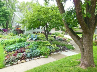 Here is an example of a beautifully tended front yard vegetable garden. What neighbor could possibly complain about this oasis?